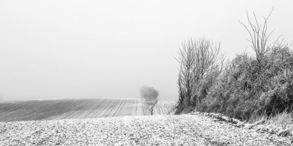 Mårslet, Langballevej. Winter