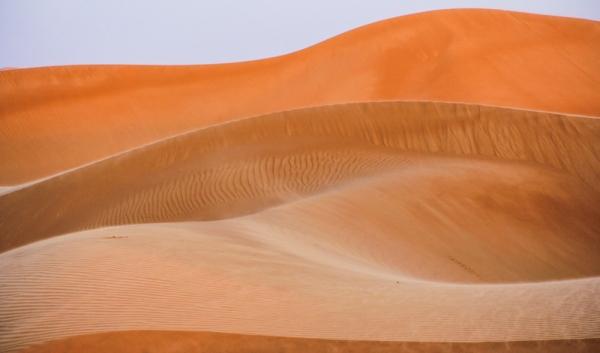 Desert fascination #1