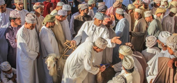 Goat traders 6